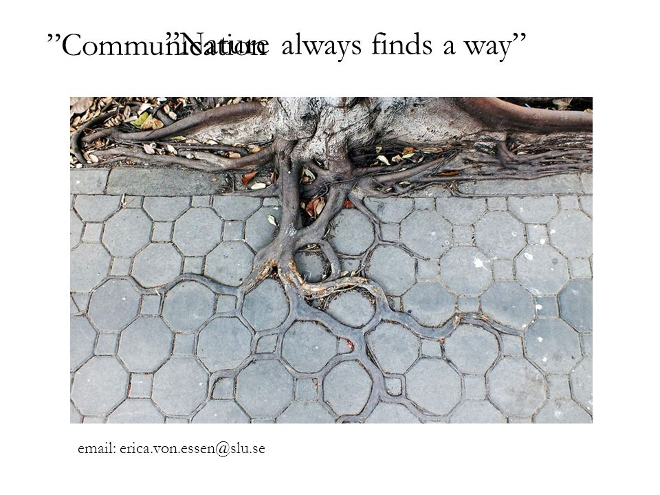 always finds a way Nature Communication email: erica.von.essen@slu.se