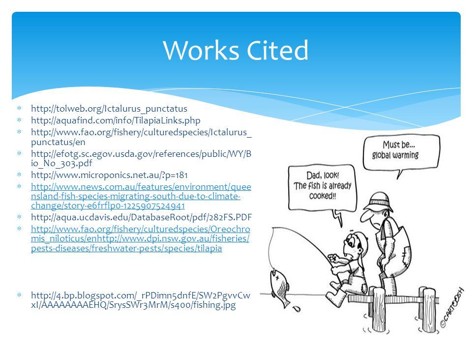 http://tolweb.org/Ictalurus_punctatus  http://aquafind.com/info/TilapiaLinks.php  http://www.fao.org/fishery/culturedspecies/Ictalurus_ punctatus/en  http://efotg.sc.egov.usda.gov/references/public/WY/B io_No_303.pdf  http://www.microponics.net.au/ p=181  http://www.news.com.au/features/environment/quee nsland-fish-species-migrating-south-due-to-climate- change/story-e6frflp0-1225907524941 http://www.news.com.au/features/environment/quee nsland-fish-species-migrating-south-due-to-climate- change/story-e6frflp0-1225907524941  http://aqua.ucdavis.edu/DatabaseRoot/pdf/282FS.PDF  http://www.fao.org/fishery/culturedspecies/Oreochro mis_niloticus/enhttp://www.dpi.nsw.gov.au/fisheries/ pests-diseases/freshwater-pests/species/tilapia http://www.fao.org/fishery/culturedspecies/Oreochro mis_niloticus/enhttp://www.dpi.nsw.gov.au/fisheries/ pests-diseases/freshwater-pests/species/tilapia  http://4.bp.blogspot.com/_rPDimn5dnfE/SW2PgvvCw xI/AAAAAAAAEHQ/SrysSWr3MrM/s400/fishing.jpg Works Cited