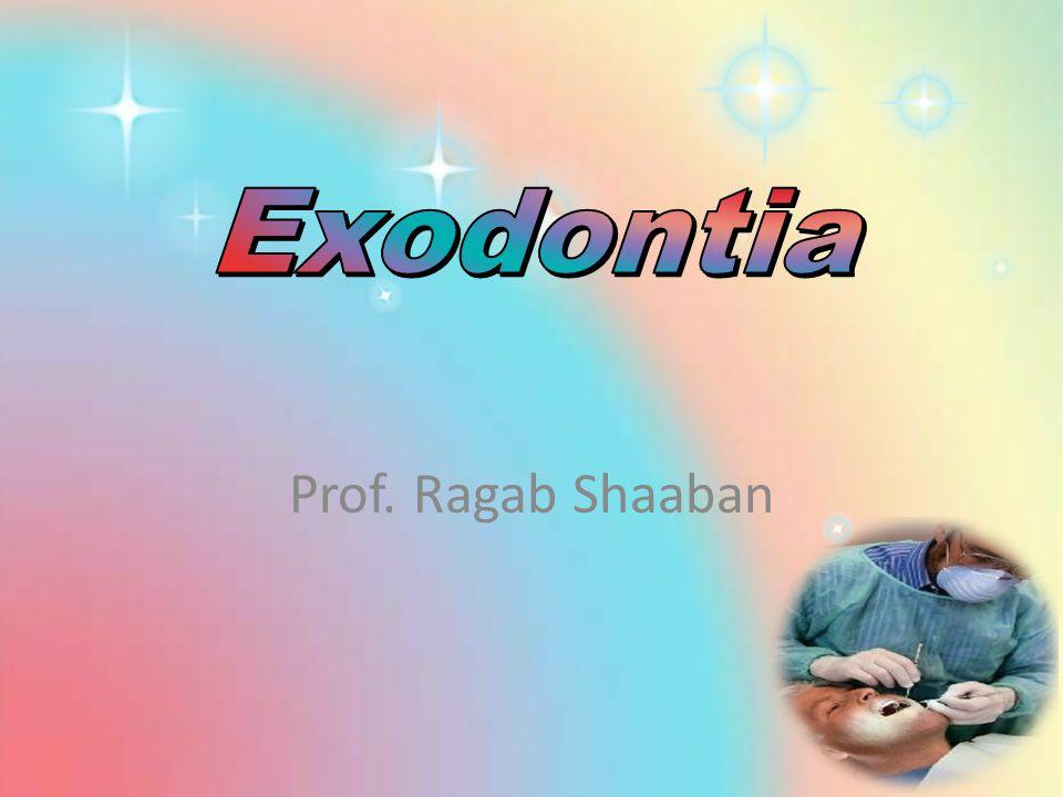 Prof. Ragab Shaaban