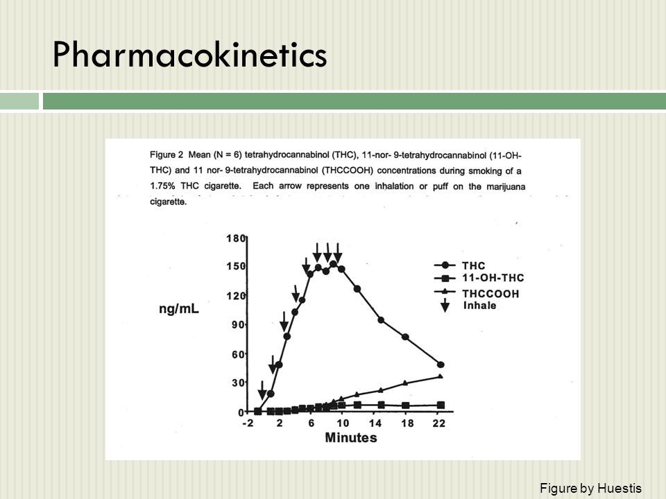 Pharmacokinetics Figure by Huestis