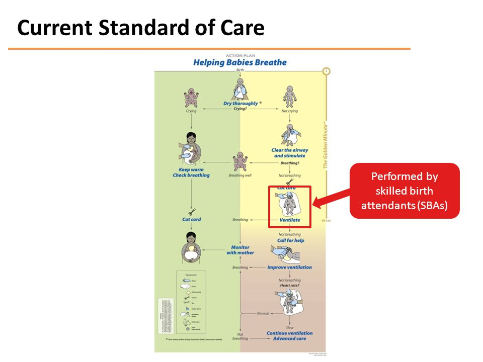 Current Standard of Care Performed by skilled birth attendants (SBAs)