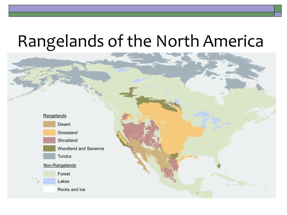 Rangelands of the North America