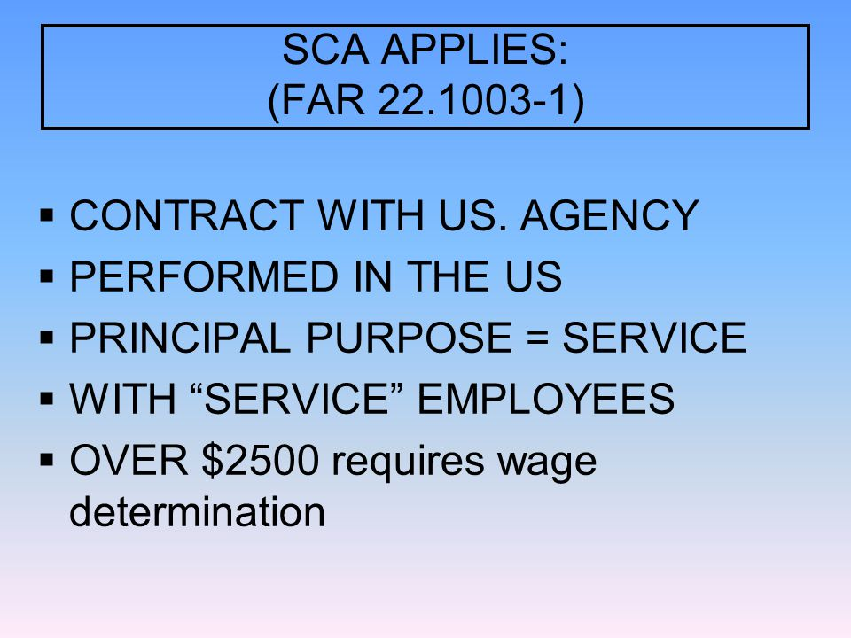 SCA APPLIES: (FAR 22.1003-1)  CONTRACT WITH US.