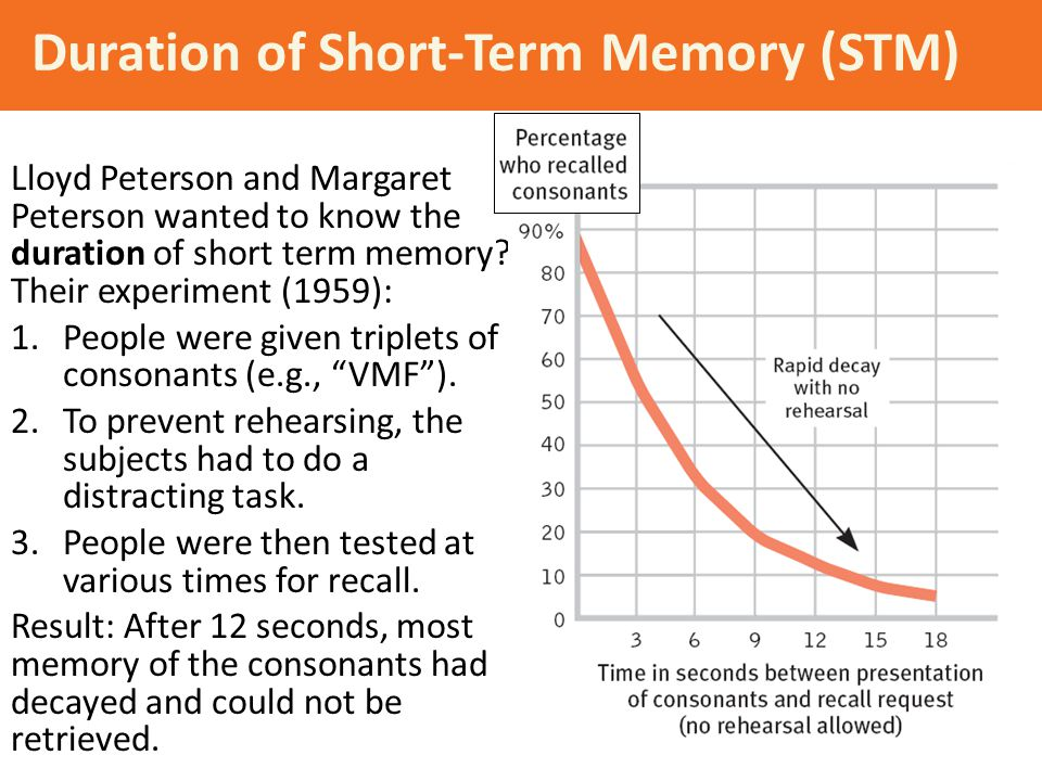 Duration of Short-Term Memory (STM) Lloyd Peterson and Margaret Peterson wanted to know the duration of short term memory? Their experiment (1959): 1.