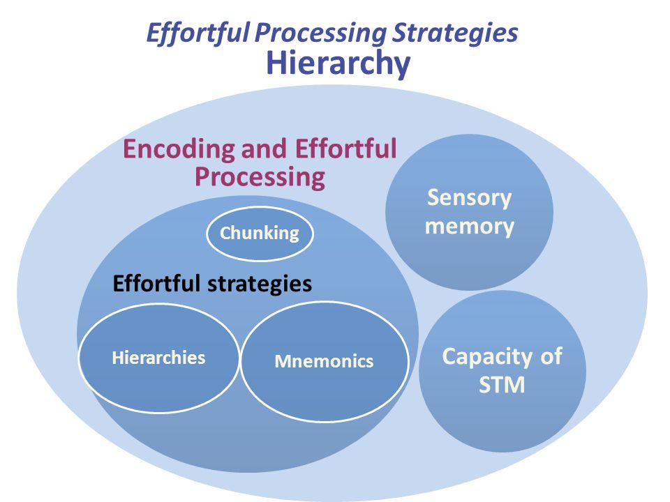 Hierarchy Sensory memory Capacity of STM Effortful strategies Effortful Processing Strategies Encoding and Effortful Processing Chunking Mnemonics Hie