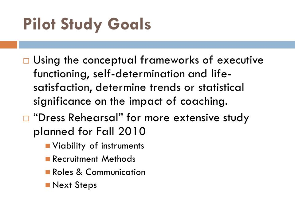Pilot Study Goals  Using the conceptual frameworks of executive functioning, self-determination and life- satisfaction, determine trends or statistic