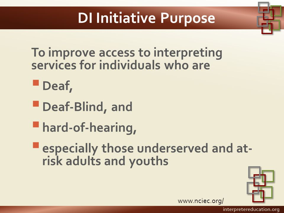 DI Initiative Purpose To improve access to interpreting services for individuals who are  Deaf,  Deaf-Blind, and  hard-of-hearing,  especially tho