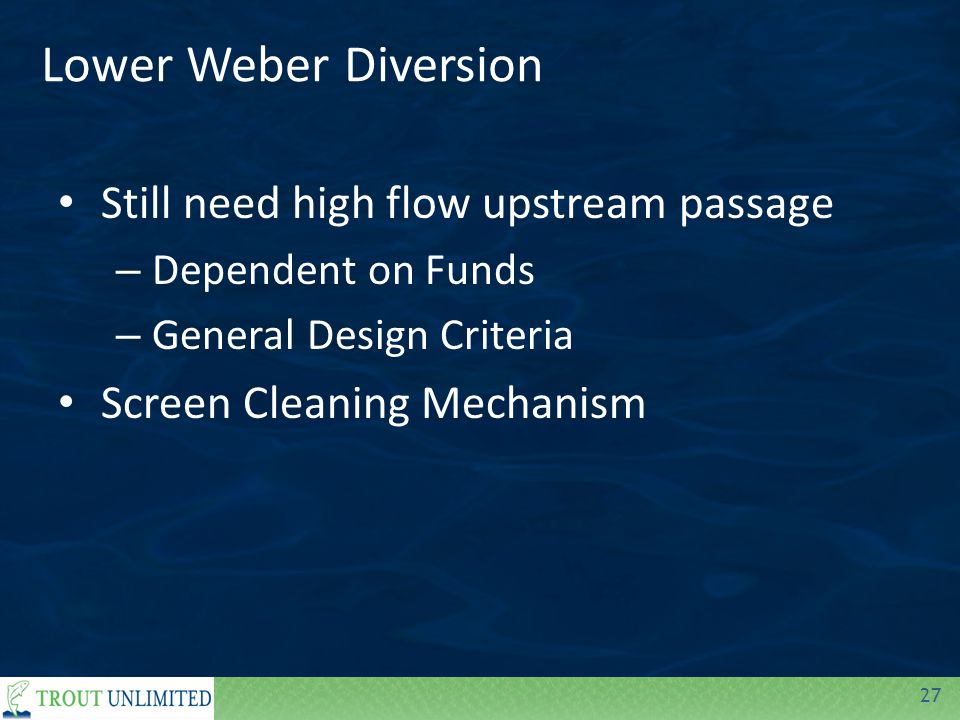 27 Lower Weber Diversion Still need high flow upstream passage – Dependent on Funds – General Design Criteria Screen Cleaning Mechanism
