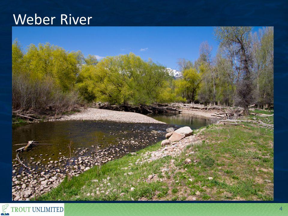 4 Weber River