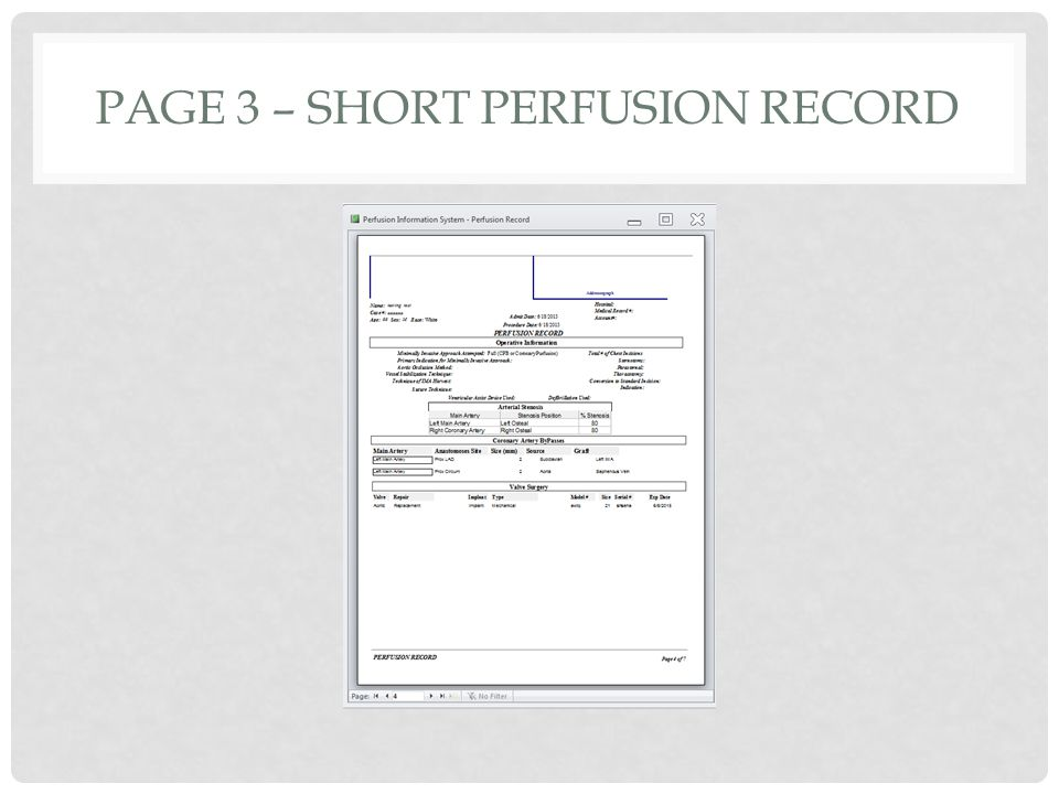 PAGE 3 – SHORT PERFUSION RECORD