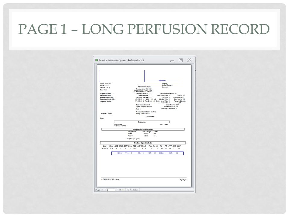 PAGE 1 – LONG PERFUSION RECORD