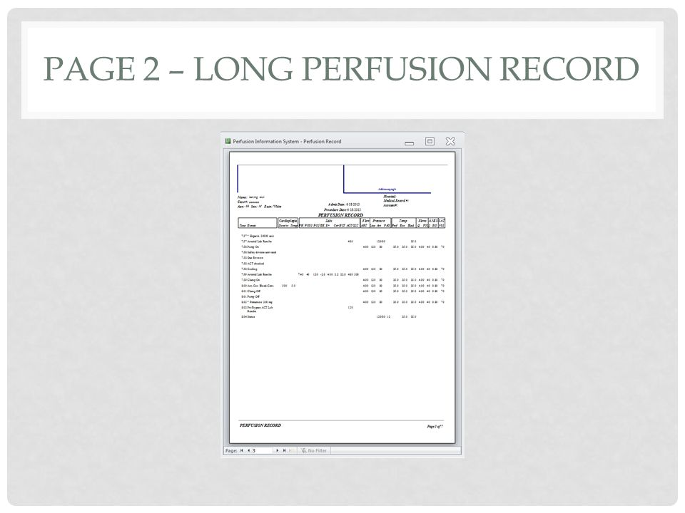 PAGE 2 – LONG PERFUSION RECORD