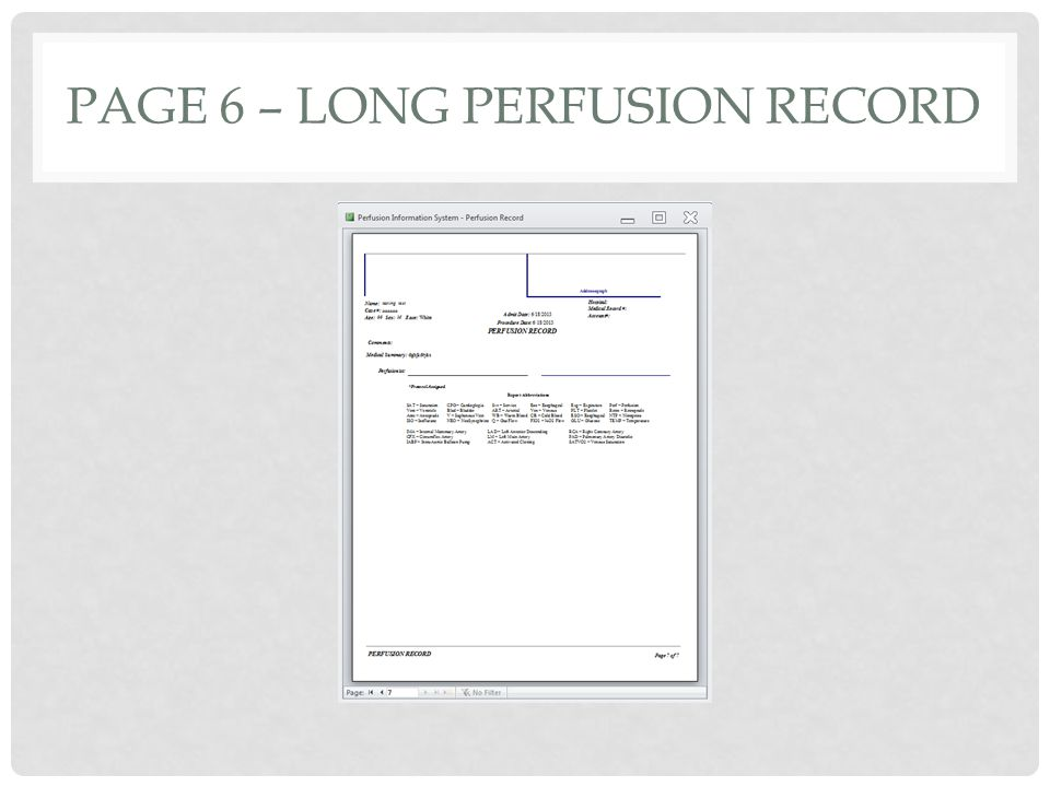 PAGE 6 – LONG PERFUSION RECORD