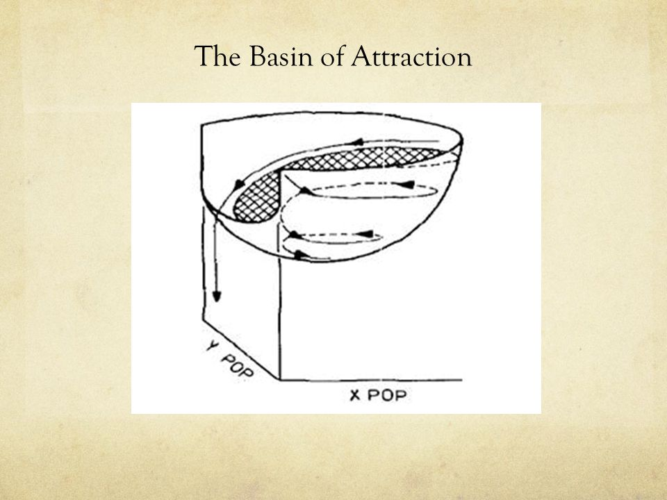 The Basin of Attraction