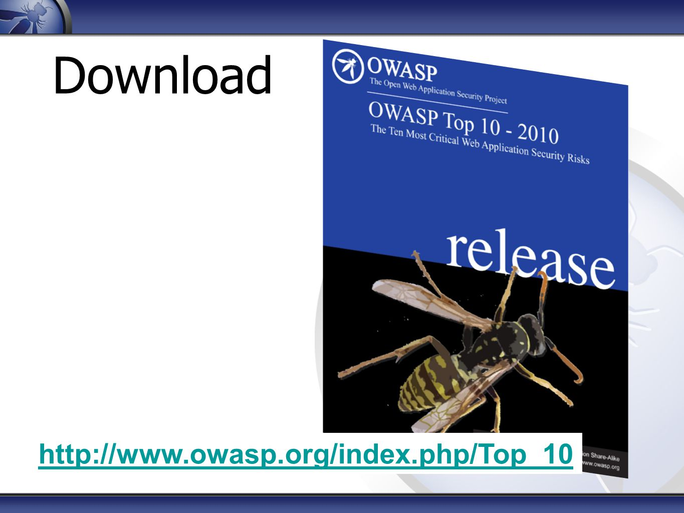 Download http://www.owasp.org/index.php/Top_10