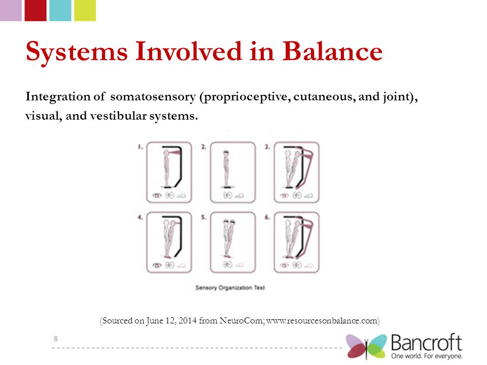 Systems Involved in Balance Integration of somatosensory (proprioceptive, cutaneous, and joint), visual, and vestibular systems.