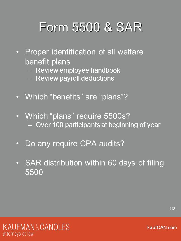 """kaufCAN.com 113 Form 5500 & SAR Proper identification of all welfare benefit plans –Review employee handbook –Review payroll deductions Which """"benefit"""