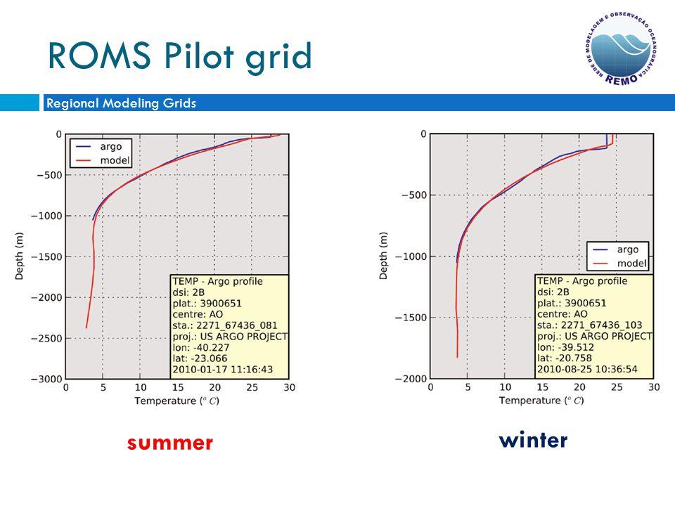 ROMS Pilot grid Regional Modeling Grids summer winter