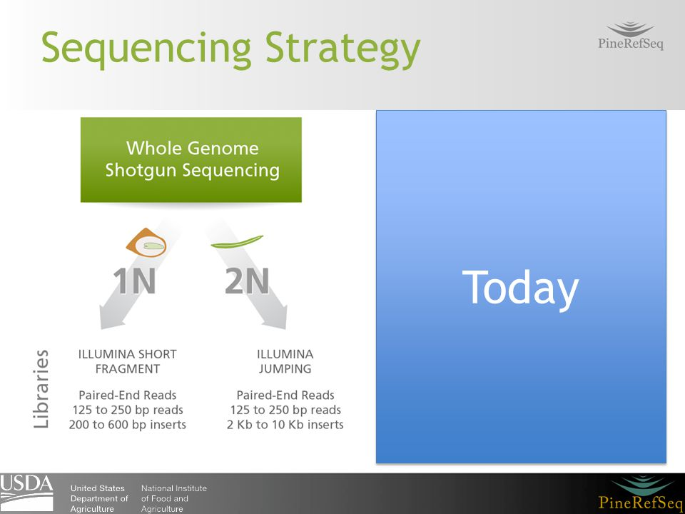 Sequencing Strategy Today