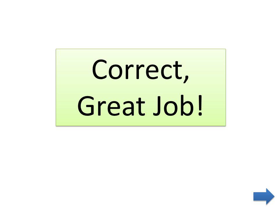 Correct, Great Job!