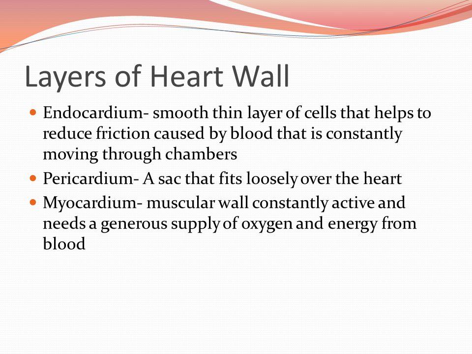 http://paramedicine101.blogspot.com/2009/08/basic-cardiology-part-i.html