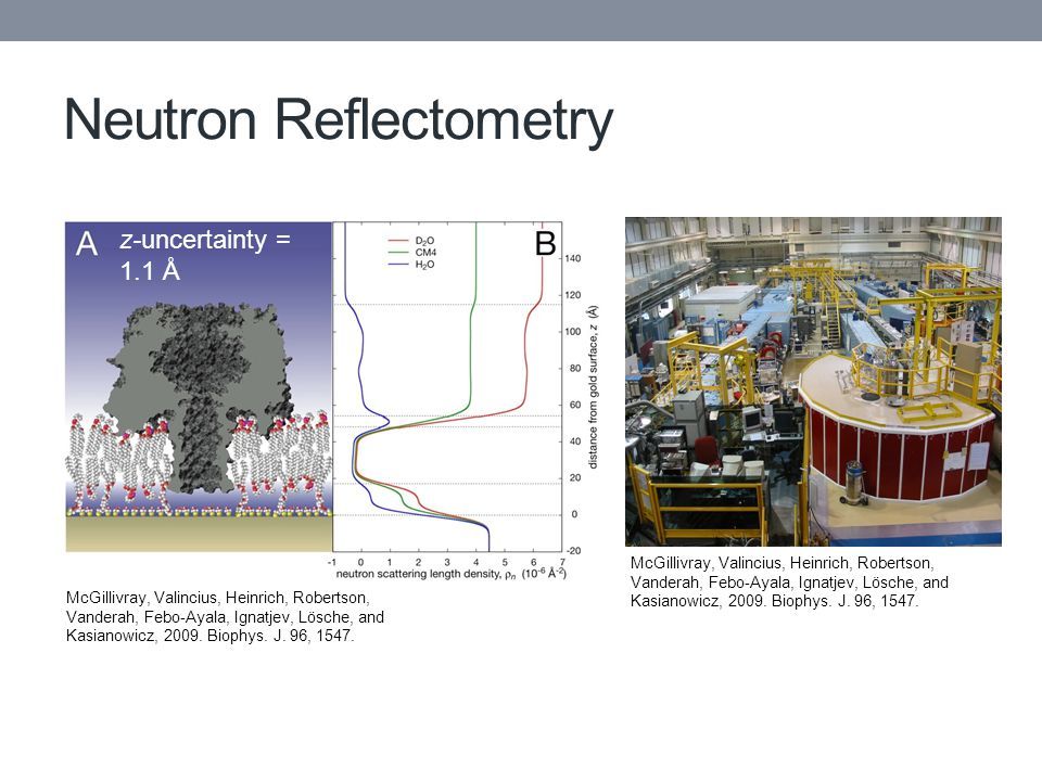 Neutron Reflectometry McGillivray, Valincius, Heinrich, Robertson, Vanderah, Febo-Ayala, Ignatjev, Lösche, and Kasianowicz, 2009.