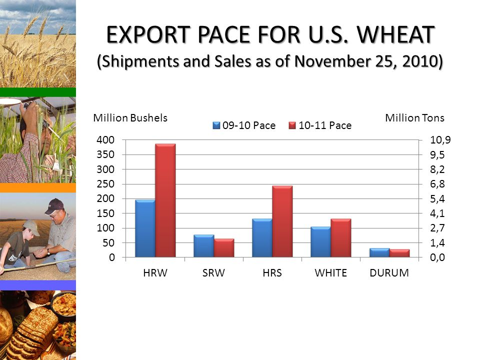 EXPORT PACE FOR U.S.