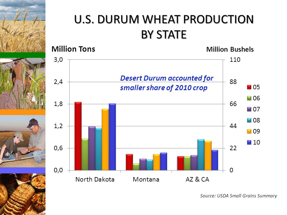 U.S. DURUM WHEAT PRODUCTION BY STATE Million Bushels Source: USDA Small Grains Summary Desert Durum accounted for smaller share of 2010 crop