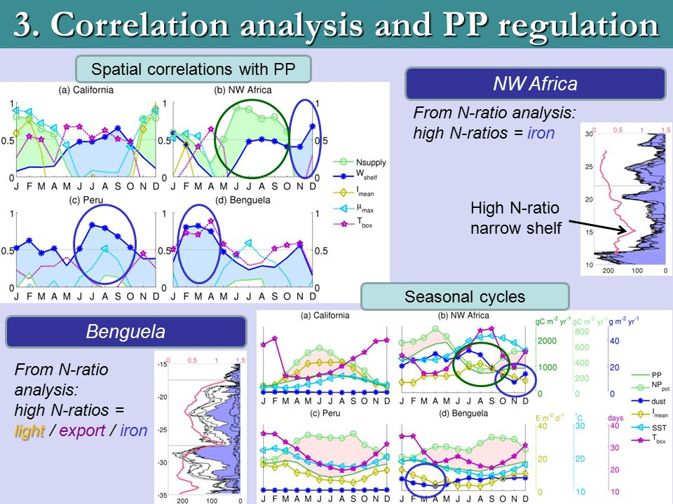 3. Correlation analysis and PP regulation Spatial correlations with PP Seasonal cycles Benguela light From N-ratio analysis: high N-ratios = light / e