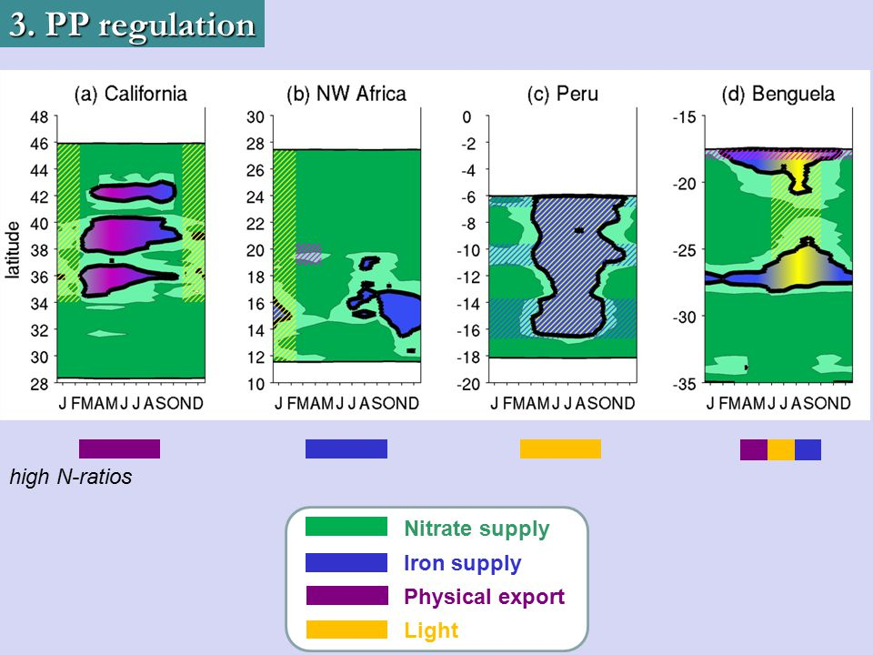 3. PP regulation high N-ratios Nitrate supply Iron supply Physical export Light