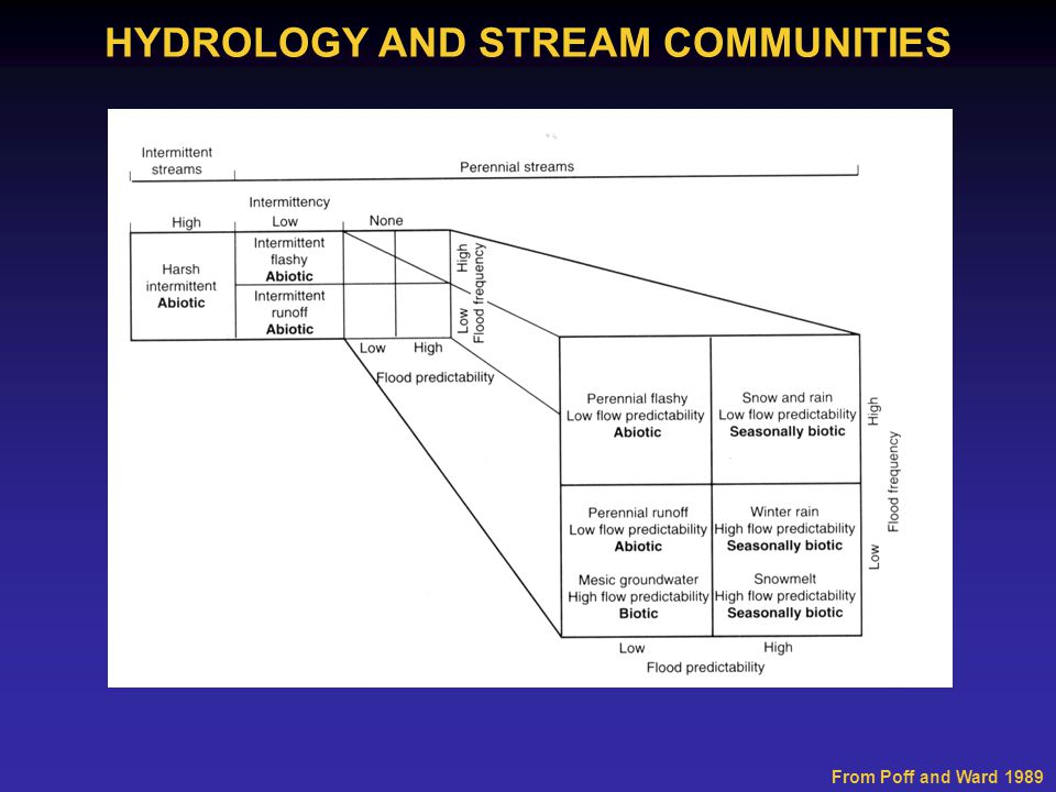 From Poff and Ward 1989 HYDROLOGY AND STREAM COMMUNITIES