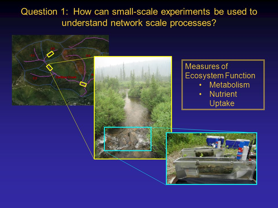Question 1: How can small-scale experiments be used to understand network scale processes.