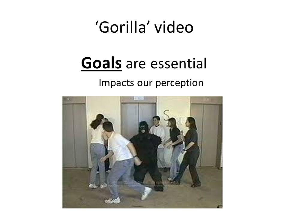 'Gorilla' video Goals are essential Impacts our perception