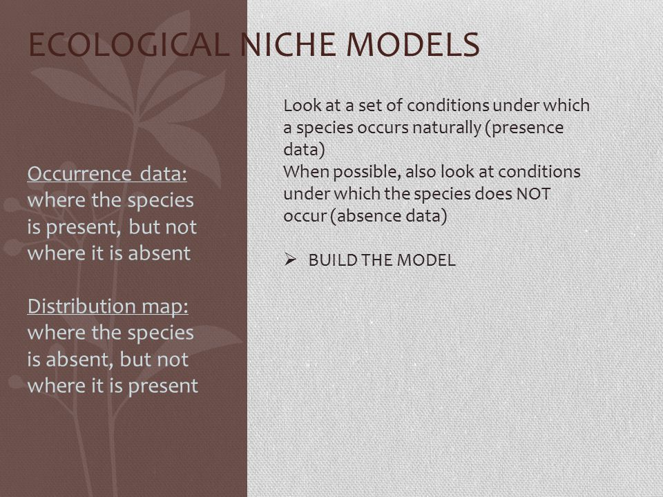ECOLOGICAL NICHE MODELS Look at a set of conditions under which a species occurs naturally (presence data) When possible, also look at conditions under which the species does NOT occur (absence data)  BUILD THE MODEL Occurrence data: where the species is present, but not where it is absent Distribution map: where the species is absent, but not where it is present