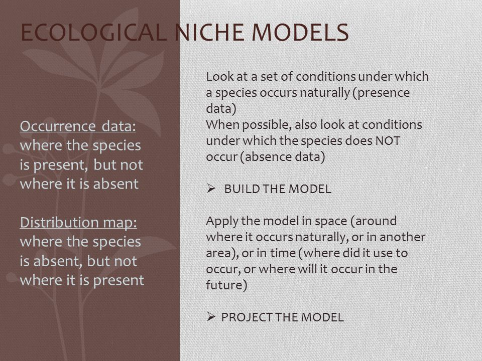 ECOLOGICAL NICHE MODELS Look at a set of conditions under which a species occurs naturally (presence data) When possible, also look at conditions under which the species does NOT occur (absence data)  BUILD THE MODEL Apply the model in space (around where it occurs naturally, or in another area), or in time (where did it use to occur, or where will it occur in the future)  PROJECT THE MODEL Occurrence data: where the species is present, but not where it is absent Distribution map: where the species is absent, but not where it is present