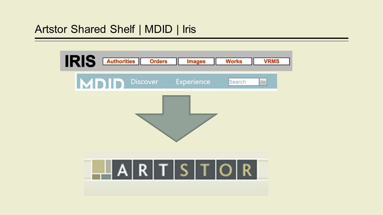 Artstor Shared Shelf | MDID | Iris