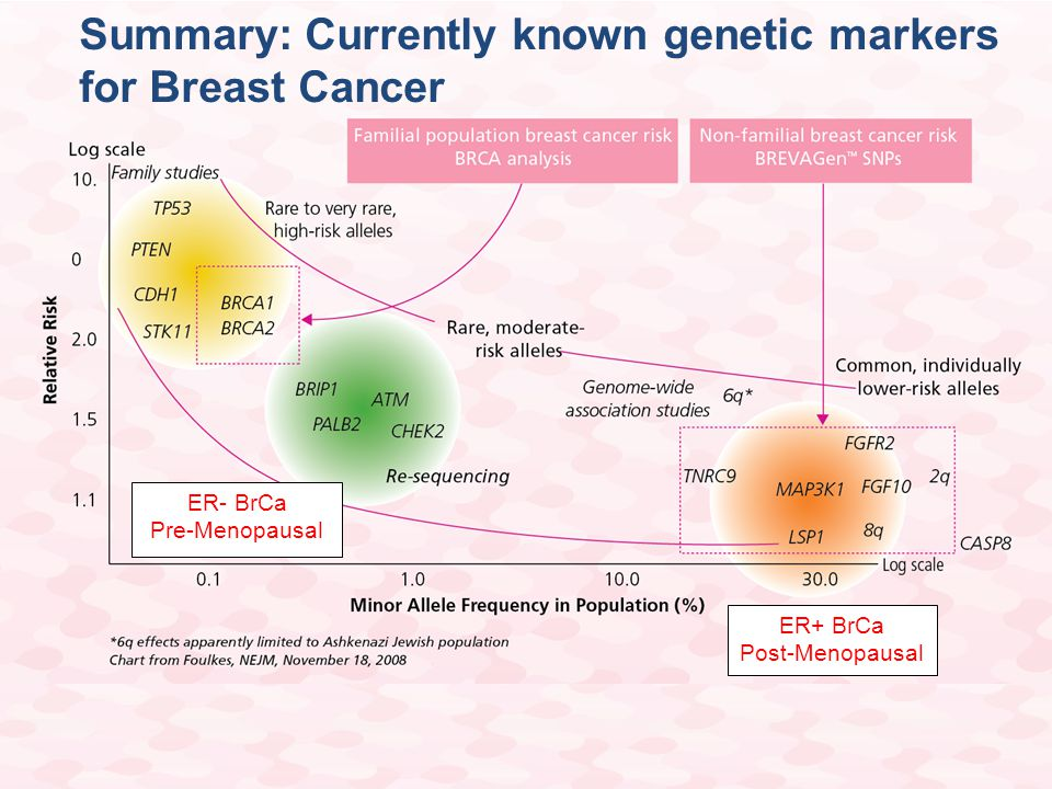 Summary: Currently known genetic markers for Breast Cancer ER+ BrCa Post-Menopausal ER- BrCa Pre-Menopausal