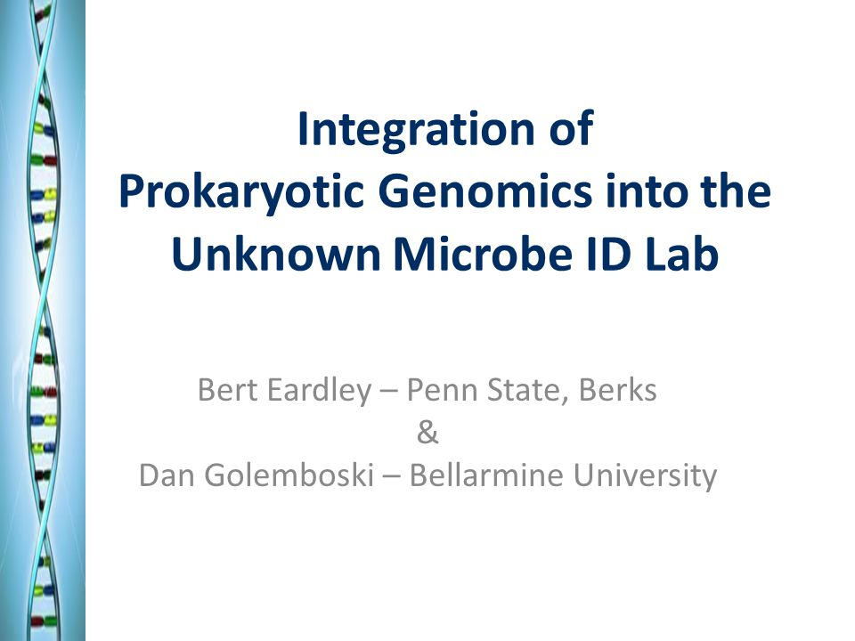 Integration of Prokaryotic Genomics into the Unknown Microbe ID Lab Bert Eardley – Penn State, Berks & Dan Golemboski – Bellarmine University