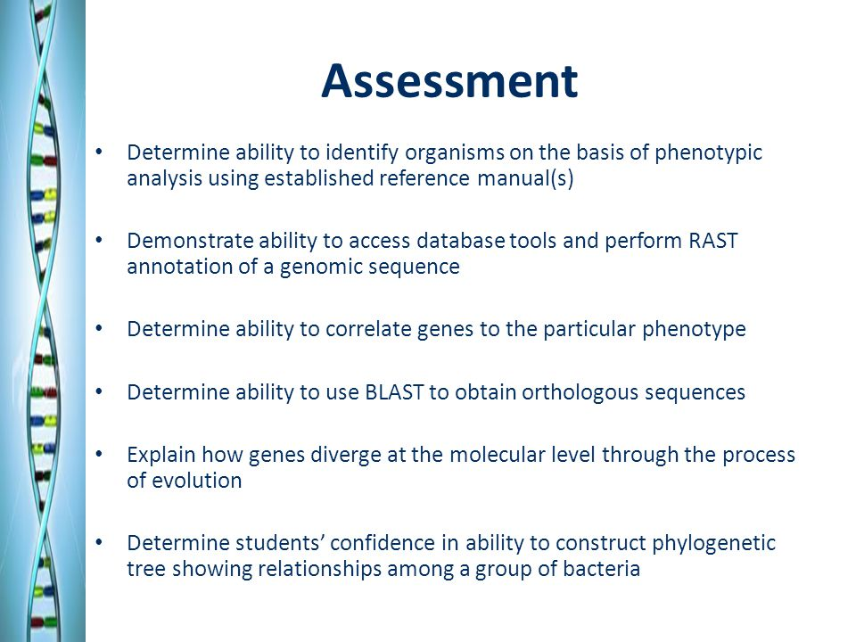 Assessment Determine ability to identify organisms on the basis of phenotypic analysis using established reference manual(s) Demonstrate ability to access database tools and perform RAST annotation of a genomic sequence Determine ability to correlate genes to the particular phenotype Determine ability to use BLAST to obtain orthologous sequences Explain how genes diverge at the molecular level through the process of evolution Determine students' confidence in ability to construct phylogenetic tree showing relationships among a group of bacteria