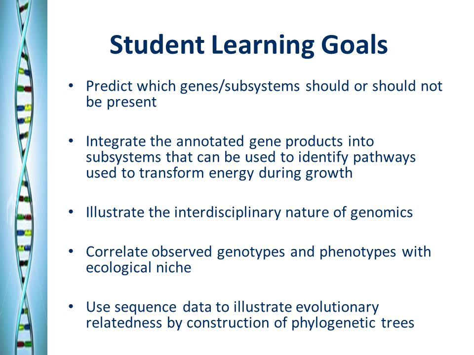 Student Learning Goals Predict which genes/subsystems should or should not be present Integrate the annotated gene products into subsystems that can be used to identify pathways used to transform energy during growth Illustrate the interdisciplinary nature of genomics Correlate observed genotypes and phenotypes with ecological niche Use sequence data to illustrate evolutionary relatedness by construction of phylogenetic trees
