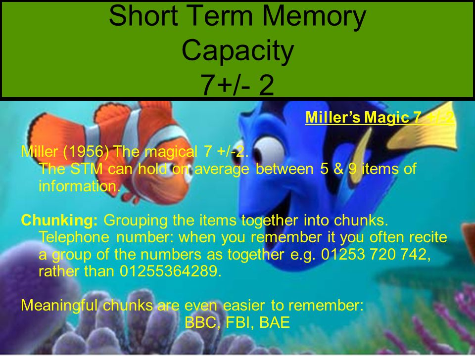 Short Term Memory Capacity 7+/- 2 Miller's Magic 7 +/-2 Miller (1956) The magical 7 +/-2.