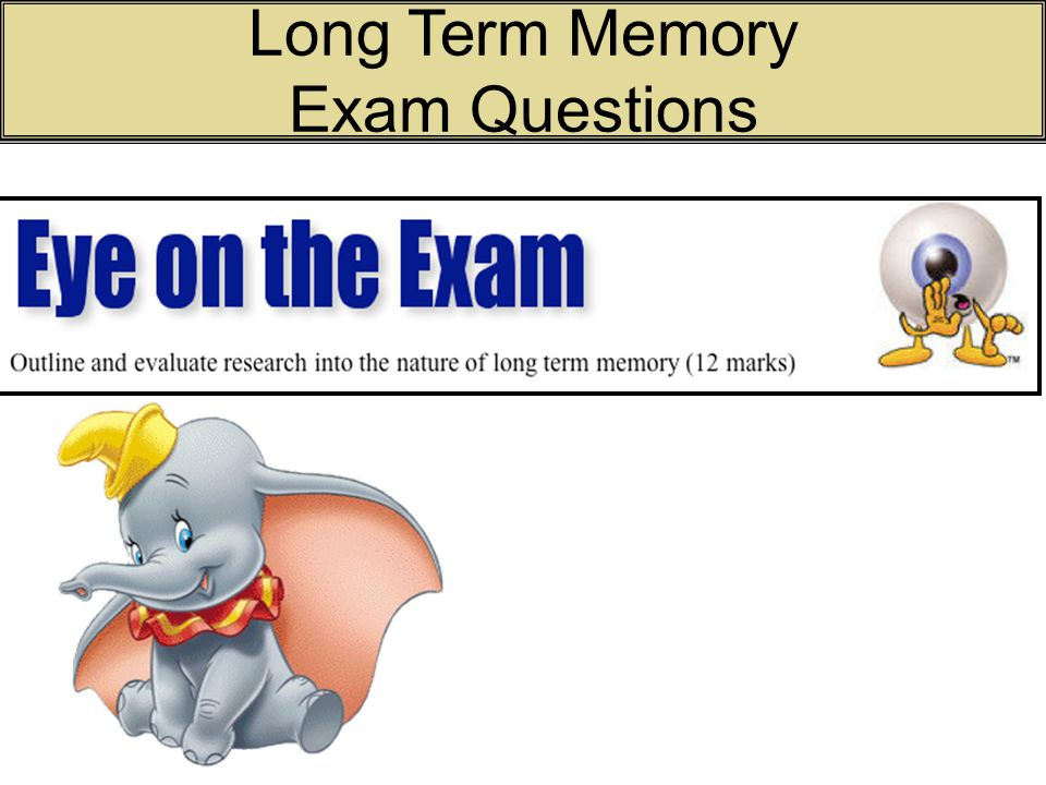 Long Term Memory Exam Questions