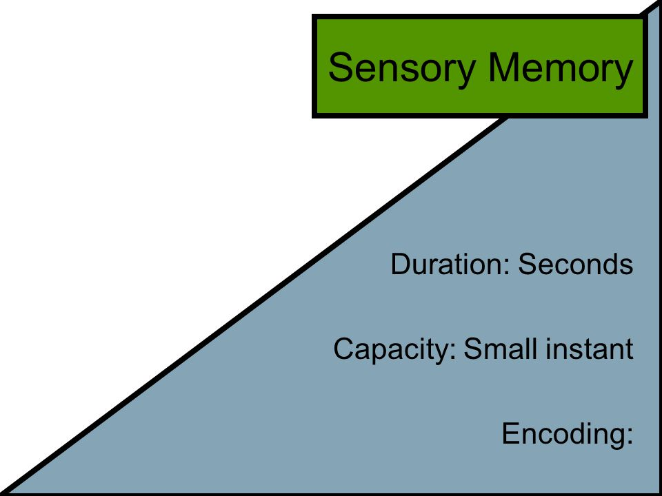 Sensory Memory Duration: Seconds Capacity: Small instant Encoding: