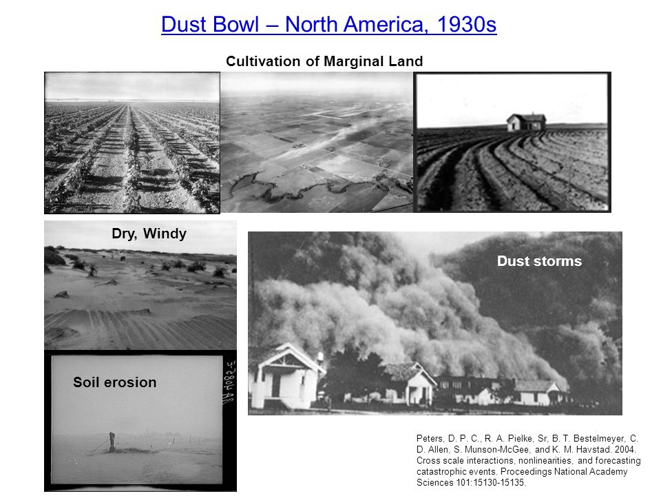 Dry, Windy Soil erosion Dust storms Dust Bowl – North America, 1930s Cultivation of Marginal Land Peters, D. P. C., R. A. Pielke, Sr, B. T. Bestelmeye