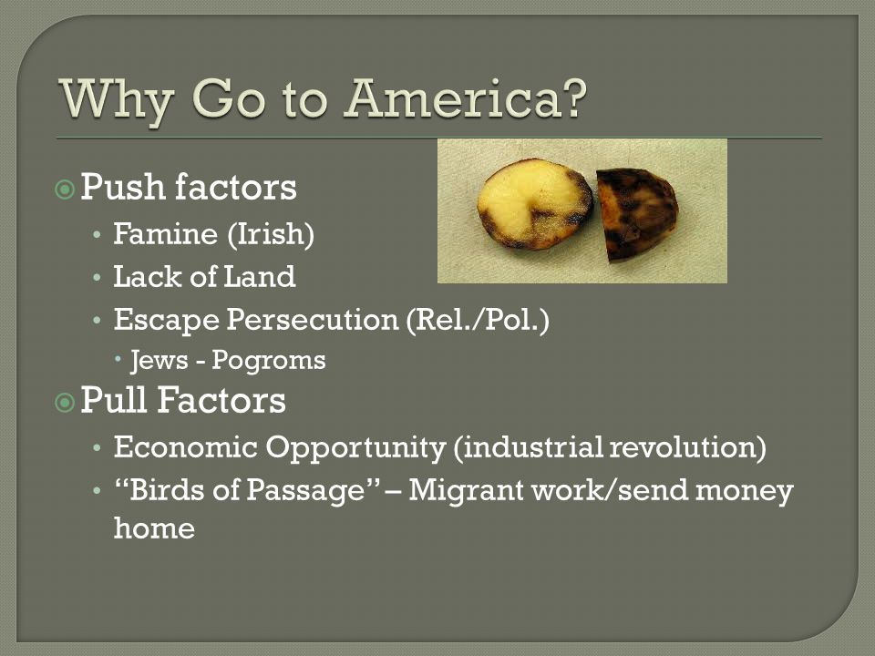  Push factors Famine (Irish) Lack of Land Escape Persecution (Rel./Pol.)  Jews - Pogroms  Pull Factors Economic Opportunity (industrial revolution) Birds of Passage – Migrant work/send money home