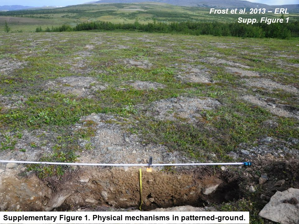 Supplementary Figure 1. Physical mechanisms in patterned-ground.