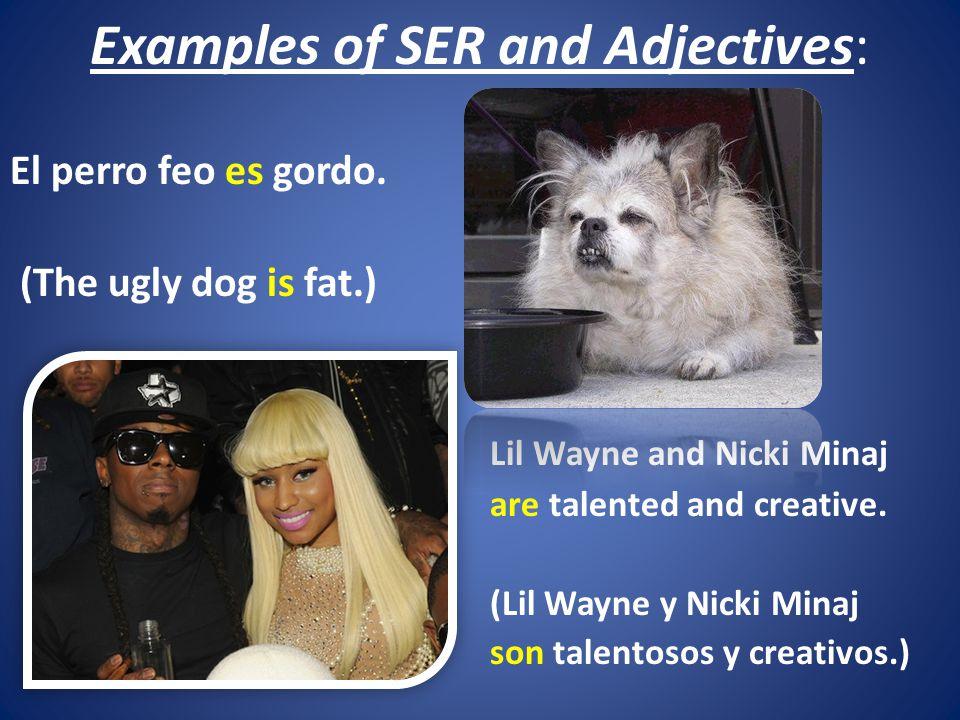 Examples of SER and Adjectives: El perro feo es gordo.