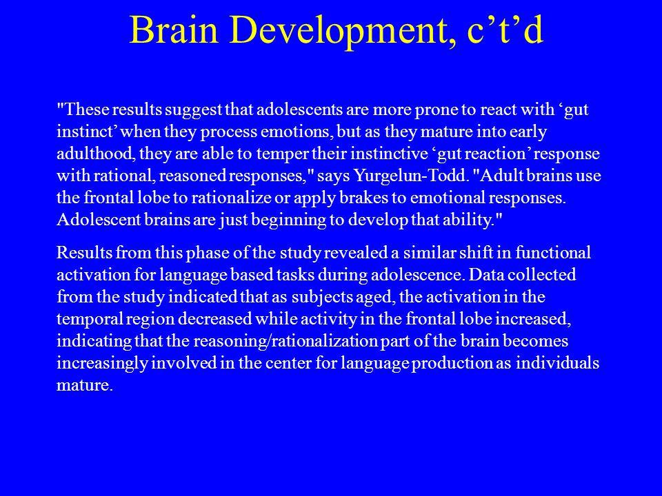 Brain Development, c't'd