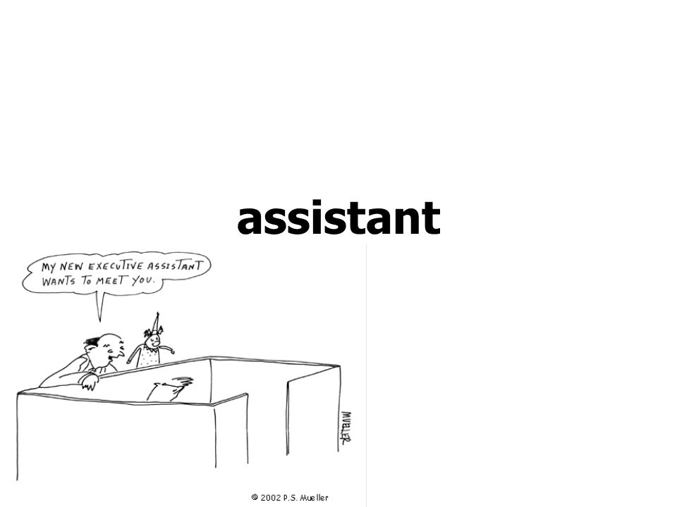 assistant