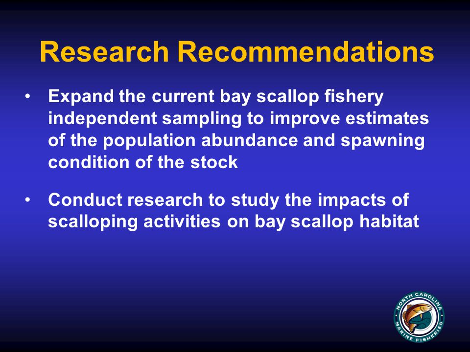 Research Recommendations Expand the current bay scallop fishery independent sampling to improve estimates of the population abundance and spawning condition of the stock Conduct research to study the impacts of scalloping activities on bay scallop habitat
